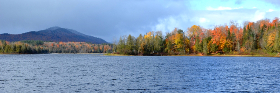lake view in autumn