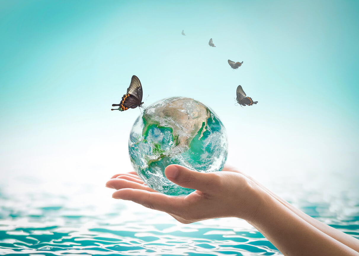 butterfly landing on the earth held in a female hand